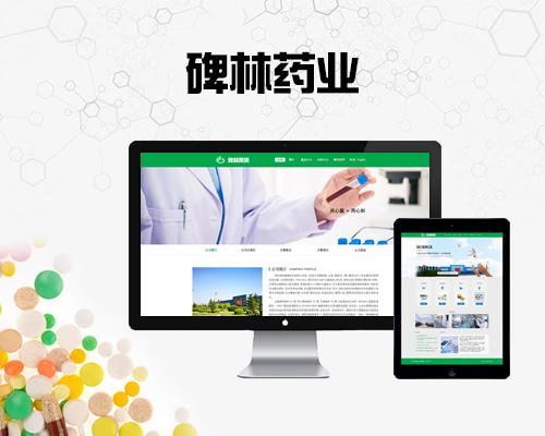 网站建设案例西安碑林药业股份有限公司