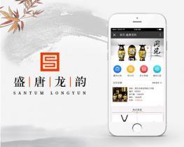 APP案例:西安盛唐龙韵电子商务有限公司